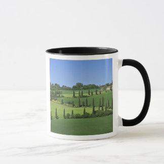 Italy, Tuscany, Multepulciano. Cypress trees Mug