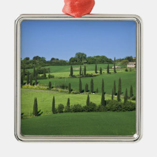 Italy, Tuscany, Multepulciano. Cypress trees Silver-Colored Square Decoration