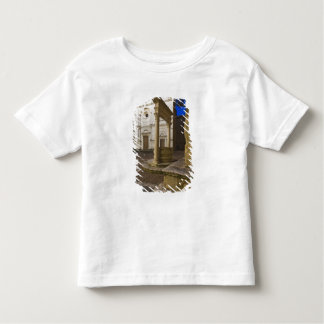 Italy, Tuscany, Pienza. Cathedral facade and Toddler T-Shirt