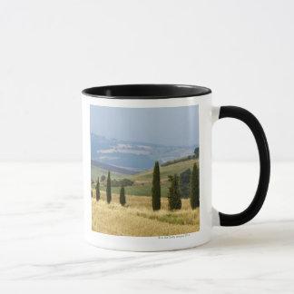 Italy. Tuscany. Pienza. Mug