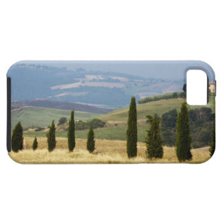 Italy. Tuscany. Pienza. Tough iPhone 5 Case