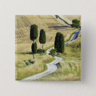Italy, Tuscany, Pienza, Val d'Orcia, Cypress 15 Cm Square Badge