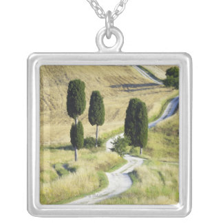 Italy, Tuscany, Pienza, Val d'Orcia, Cypress Silver Plated Necklace
