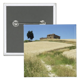 Italy, Tuscany, Pienza, Val d'Orcia, Wheat field 15 Cm Square Badge
