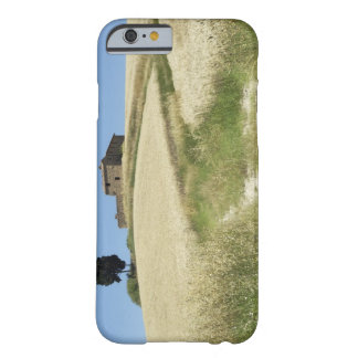 Italy, Tuscany, Pienza, Val d'Orcia, Wheat field Barely There iPhone 6 Case