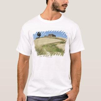 Italy, Tuscany, Pienza, Val d'Orcia, Wheat field T-Shirt