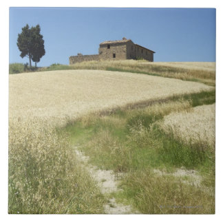 Italy, Tuscany, Pienza, Val d'Orcia, Wheat field Tile