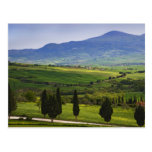 Italy, Tuscany. Scenic of the Tuscan Postcard