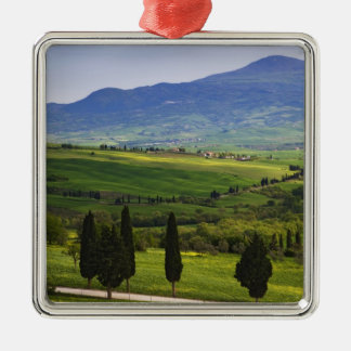 Italy, Tuscany. Scenic of the Tuscan Silver-Colored Square Decoration