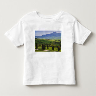 Italy, Tuscany. Scenic of the Tuscan Toddler T-Shirt