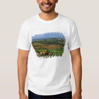 Italy, Tuscany. Scenic of the Val d'Orcia Tees