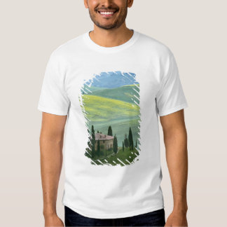 Italy, Tuscany. The Belvedere or beautiful Shirts
