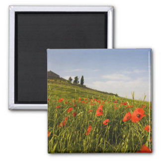 Italy, Tuscany, Tuscan Villa in Spring With Magnet