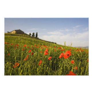 Italy, Tuscany, Tuscan Villa in Spring With Photo Print