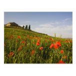 Italy, Tuscany, Tuscan Villa in Spring With Postcard