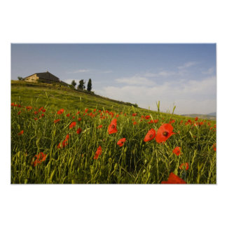 Italy, Tuscany, Tuscan Villa in Spring With Poster