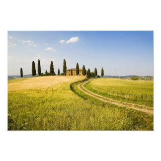 Italy, Tuscany, Tuscan Villa nearing Harvest. Photo Print
