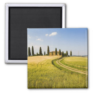 Italy, Tuscany, Tuscan Villa nearing Harvest. Square Magnet