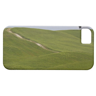 Italy, Tuscany, Val D'Orcia, Landscape 3 Case For The iPhone 5