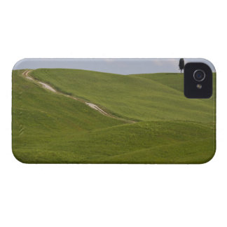 Italy, Tuscany, Val D'Orcia, Landscape 3 iPhone 4 Covers