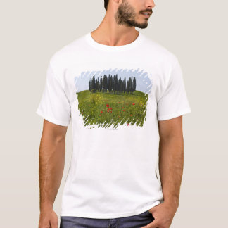 Italy, Tuscany, Val D'Orcia, Landscape T-Shirt
