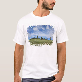 Italy, Tuscany, Val D'Orcia, Landscape with T-Shirt
