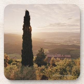Italy,Tuscany,Val d'Orcia,Montalcino Beverage Coaster