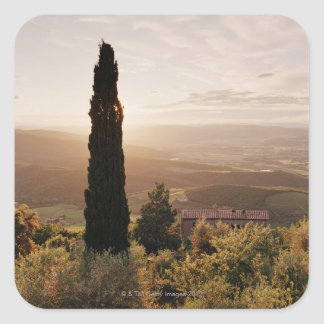 Italy,Tuscany,Val d'Orcia,Montalcino Square Sticker