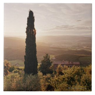 Italy,Tuscany,Val d'Orcia,Montalcino Tile