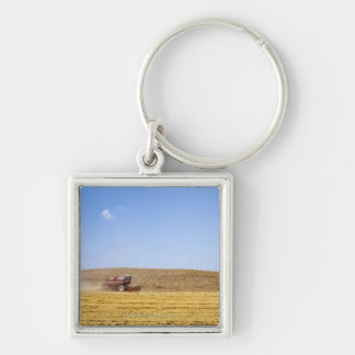 Italy. Tuscany. Val D'Orcia (Orcia Valley) Key Ring