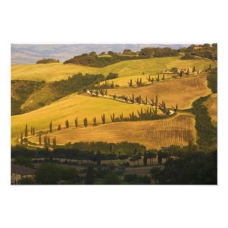 Italy, Tuscany, ZigZag Road in Tuscany. Photo Print