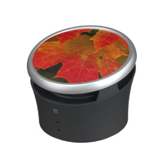 Itasca State Park, Fall Colors 2 Bluetooth Speaker