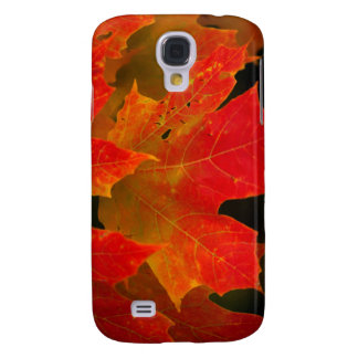 Itasca State Park, Fall Colors 2 Galaxy S4 Case