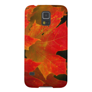 Itasca State Park, Fall Colors 2 Galaxy S5 Cover