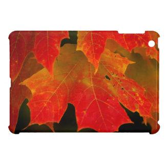 Itasca State Park, Fall Colors 2 iPad Mini Case