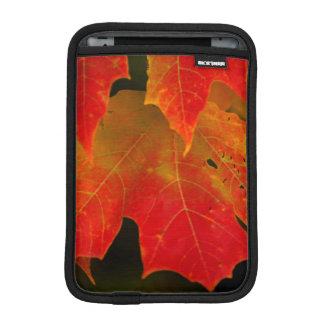 Itasca State Park, Fall Colors 2 iPad Mini Sleeve