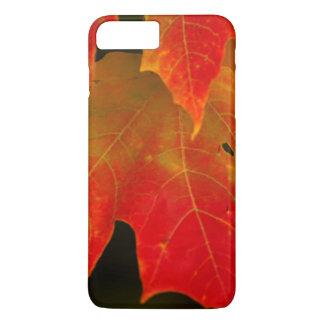 Itasca State Park, Fall Colors 2 iPhone 8 Plus/7 Plus Case