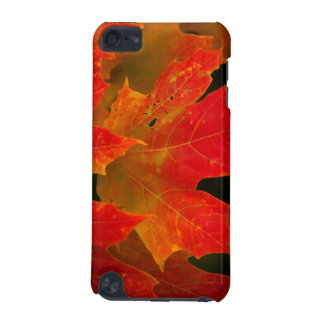 Itasca State Park, Fall Colors 2 iPod Touch (5th Generation) Case