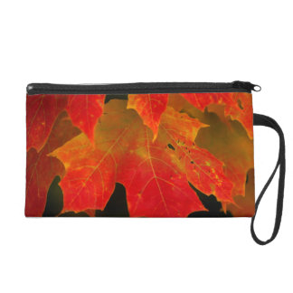 Itasca State Park, Fall Colors 2 Wristlet Purse