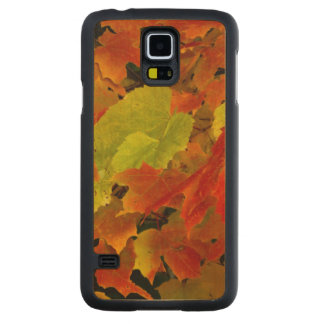 Itasca State Park, Fall Colors Carved Maple Galaxy S5 Case