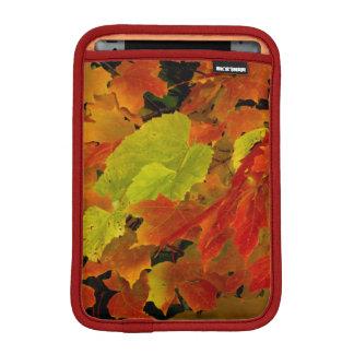 Itasca State Park, Fall Colors iPad Mini Sleeve