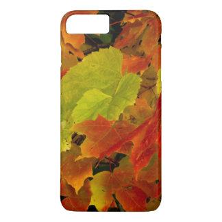 Itasca State Park, Fall Colors iPhone 8 Plus/7 Plus Case