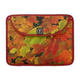Itasca State Park, Fall Colors Sleeve For MacBook Pro