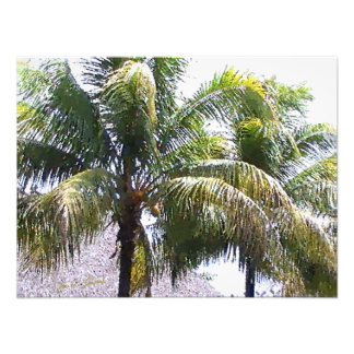 Item 041814 Palm - Winery Dots Study Photo Print