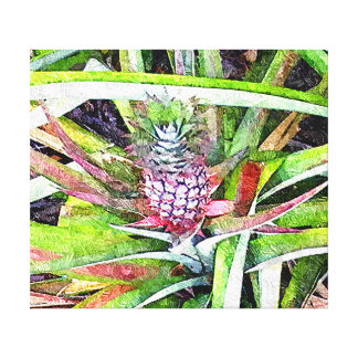 Item 041814 Pineapple Oil Painting Study Stretched Canvas Print