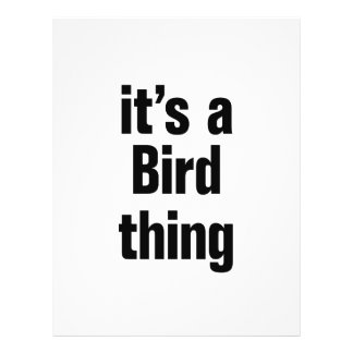 "its a bird thing 8.5"" x 11"" flyer"