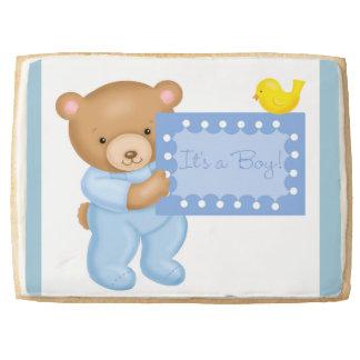 It's a boy - teddy bear