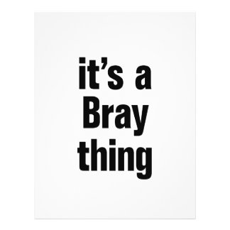 its a bray thing 21.5 cm x 28 cm flyer