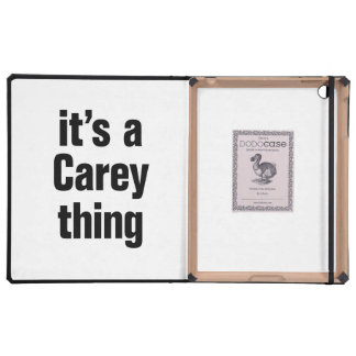 its a carey thing covers for iPad
