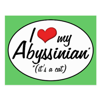 It's a Cat! I Love My Abyssinian Postcard